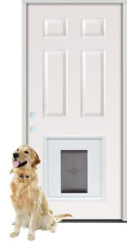 6-Panel Steel Prehung Door Unit with Pet Door Insert